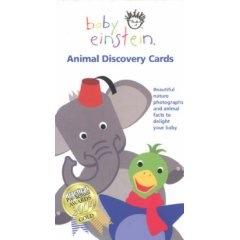 Baby Einstein Flash Cards