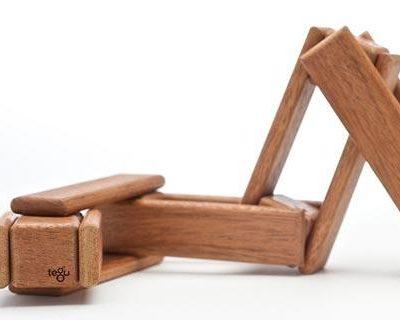Tegu magnetic wooden blocks