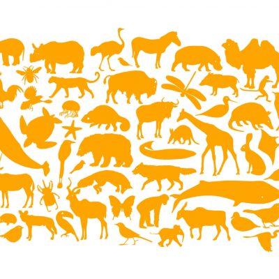 ZeebenDry Animal Silhouettes print