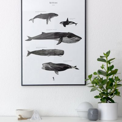 Coco Lapine whale print at White Black Grey