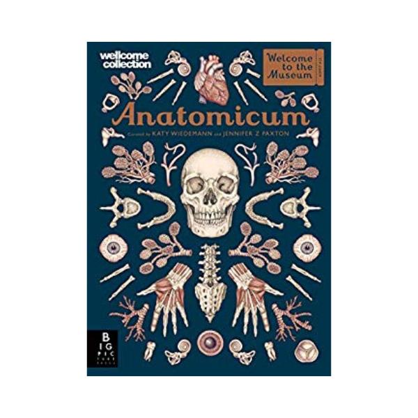 Anatomicum by Jennifer Z Paxton (Templar, RRP £20).