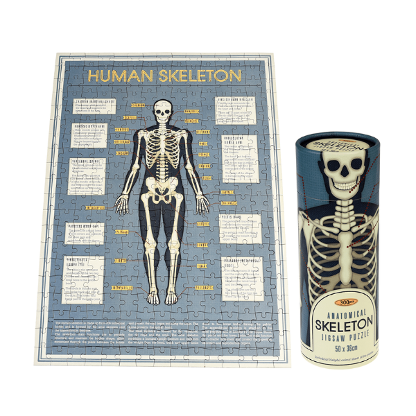 Skeleton puzzle in a tube, £8.95, Rex London.