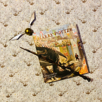 10 Best: Harry Potter Book Night