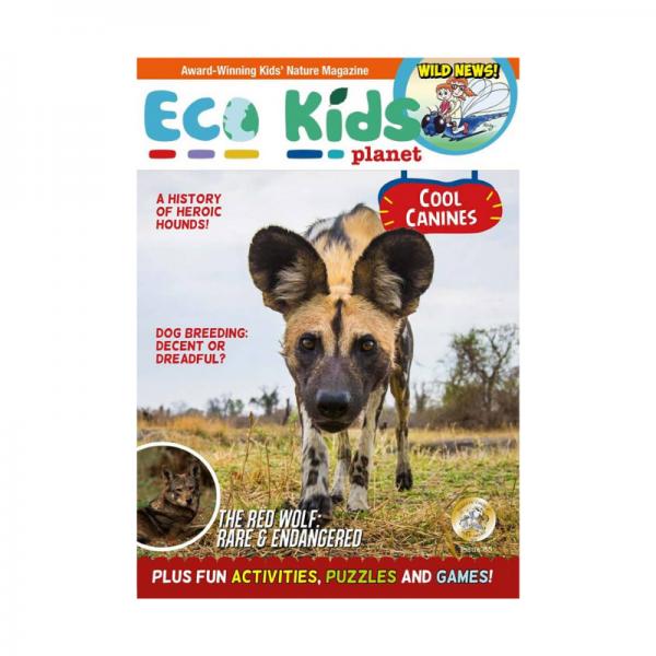 Eco Kids Planet