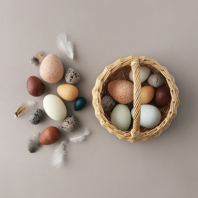 Covetable: Moon Picnic A Dozen Bird Eggs wooden toy